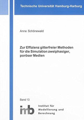 Zur Effizienz gitterfreier Methoden für die Simulation zweiphasiger, poröser Medien: Anne...