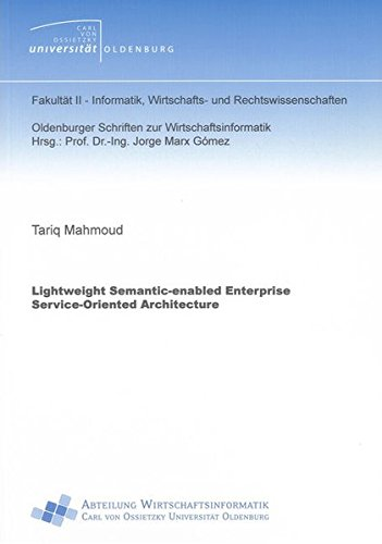 Lightweight Semantic-enabled Enterprise Service-oriented Architecture (Oldenburger Schriften: Tariq Mahmoud