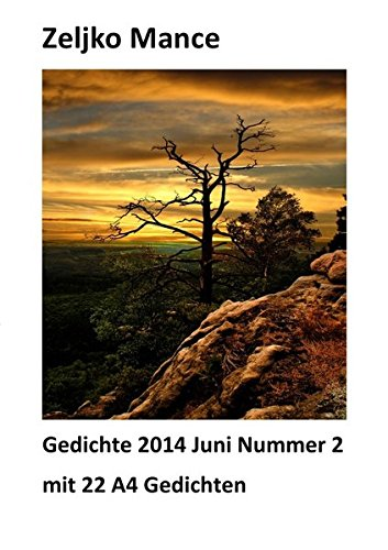 9783844297775: Gedichte 2014 Juni Nummer 2 mit 22 A4 Gedichten (German Edition)