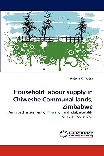 9783844312683: Household labour supply in Chiweshe Communal lands, Zimbabwe: An impact assessment of migration and adult mortality on rural households