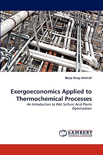 9783844319101: Exergoeconomics Applied to Thermochemical Processes