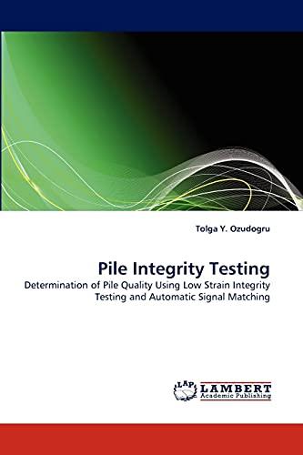 Pile Integrity Testing (Paperback): Tolga Y Ozudogru