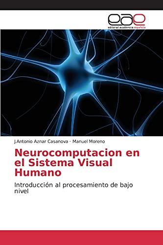 9783844338799: Neurocomputacion en el Sistema Visual Humano: Introducción al procesamiento de bajo nivel (Spanish Edition)