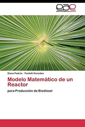 9783844342482: Modelo Matemático de un Reactor: para Producción de Biodiesel (Spanish Edition)