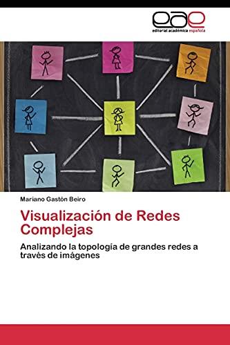 9783844348071: Visualización de Redes Complejas