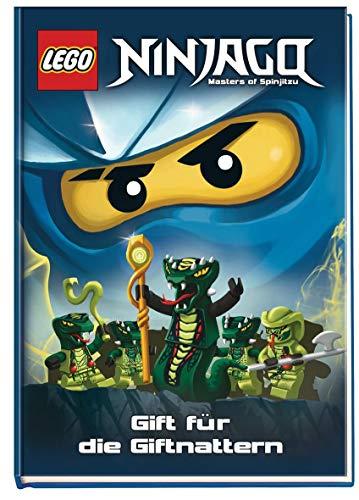 9783845100487: LEGO Ninjago