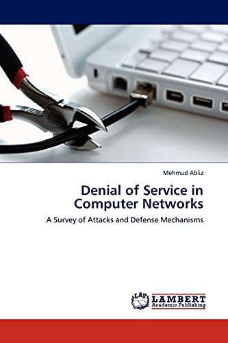 Denial of Service in Computer Networks: Mehmud Abliz