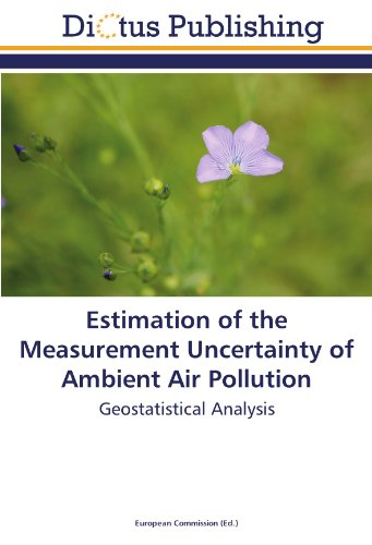 9783845453538: Estimation of the Measurement Uncertainty of Ambient Air Pollution: Geostatistical Analysis