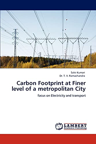 Carbon Footprint at Finer Level of a Metropolitan City: Salvi Kumari