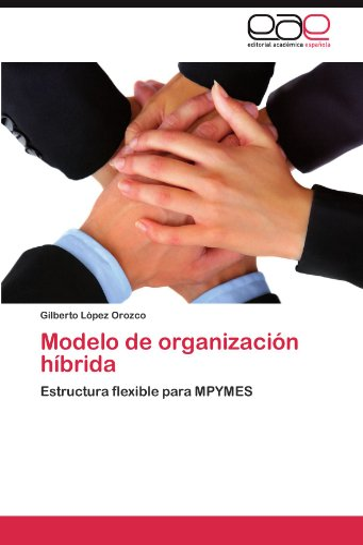 9783845482057: Modelo de organización híbrida