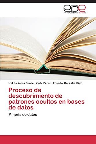 9783845490267: Proceso de descubrimiento de patrones ocultos en bases de datos: Minería de datos (Spanish Edition)