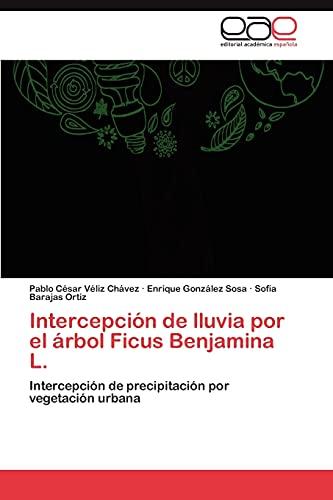 9783845494531: Intercepción de lluvia por el árbol Ficus Benjamina L.: Intercepción de precipitación por vegetación urbana (Spanish Edition)