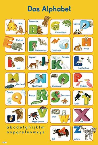 9783845501345: Mein Lernposter: Das Alphabet