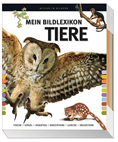 9783845503738: Mein großes Bildlexikon Tiere: Fische, Vögel, Insekten, Kriechtiere, Lurche, Säugetiere