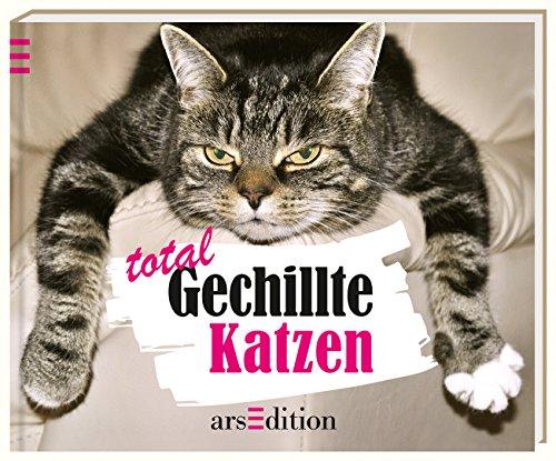 Total Gechillte Katzen: Vennebusch, Paulus