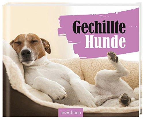 Gechillte Hunde: Paulus Vennebusch