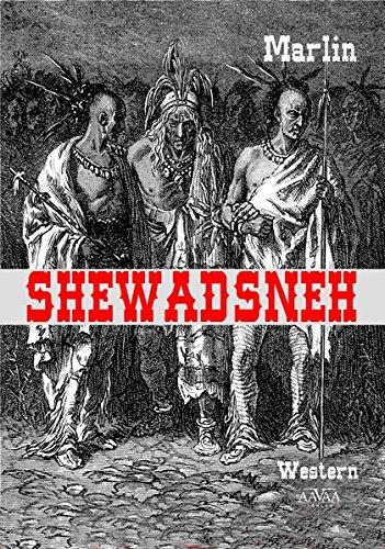 9783845920658: Shewadsneh - Großdruck