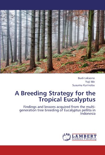 9783846531389: A Breeding Strategy for the Tropical Eucalyptus: Findings and lessons acquired from the multi-generation tree breeding of Eucalyptus pellita in Indonesia