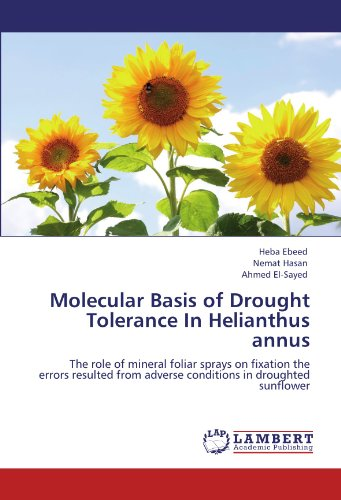 9783846552339: Molecular Basis of Drought Tolerance In Helianthus annus: The role of mineral foliar sprays on fixation the errors resulted from adverse conditions in droughted sunflower