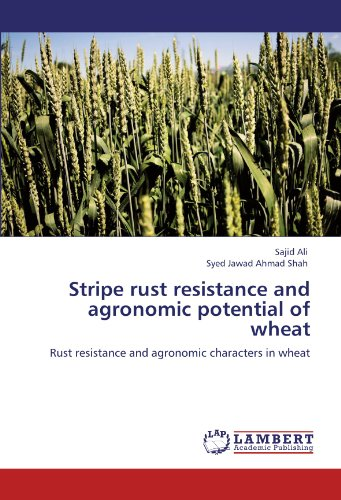 Stripe rust resistance and agronomic potential of: Ali, Sajid /
