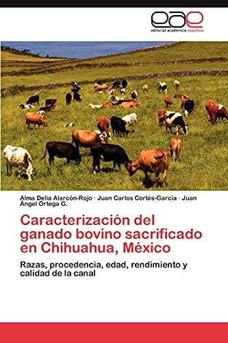 9783846562352: Caracterización del ganado bovino sacrificado en Chihuahua, México: Razas, procedencia, edad, rendimiento y calidad de la canal (Spanish Edition)