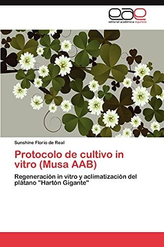 9783846562468: Protocolo de cultivo in vitro (Musa AAB): Regeneración in vitro y aclimatización del plátano