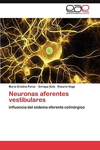 9783846564356: Neuronas aferentes vestibulares: influencia del sistema eferente colinérgico (Spanish Edition)