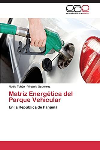 Matriz Energetica del Parque Vehicular: Nadia Tuñ� n