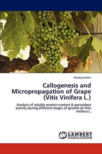 9783846588949: Callogenesis and Micropropagation of Grape (Vitis Vinifera L.): Analysis of soluble protein content & peroxidase activity during different stages of growth of Vitis vinifera L.