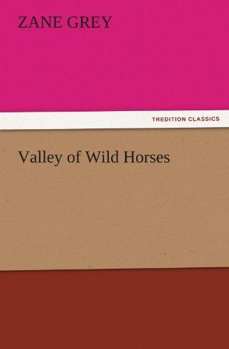 9783847222460: Valley of Wild Horses (TREDITION CLASSICS)