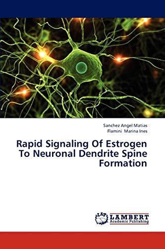 Rapid Signaling Of Estrogen To Neuronal Dendrite Spine Formation: Sanchez Angel Matias