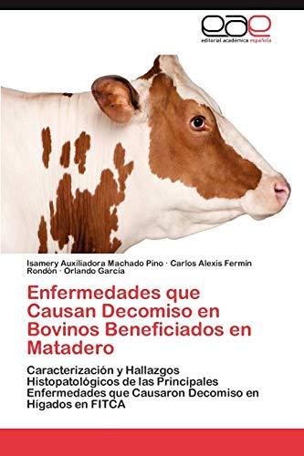 Enfermedades Que Causan Decomiso En Bovinos Beneficiados En Matadero: Isamery Auxiliadora Machado ...