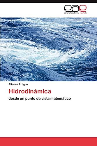 9783847359395: Hidrodinámica: desde un punto de vista matemático (Spanish Edition)