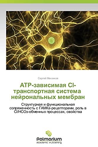 ATR-zavisimaya Sl-transportnaya sistema neyronal'nykh membran: Strukturnaya i funktsional&#x27...