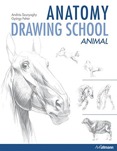 9783848008308: Anatomy Drawing School: Animal Anatomy
