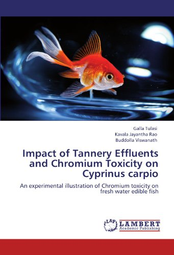 9783848403639: Impact of Tannery Effluents and Chromium Toxicity on Cyprinus carpio: An experimental illustration of Chromium toxicity on fresh water edible fish