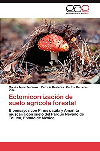 9783848455447: Ectomicorrización de suelo agrícola forestal: Bioensayos con Pinus patula y Amanita muscaria con suelo del Parque Nevado de Toluca, Estado de México (Spanish Edition)