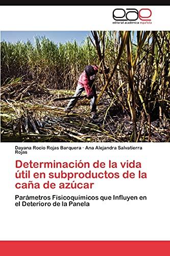 9783848457465: Determinacion de La Vida Util En Subproductos de La Cana de Azucar