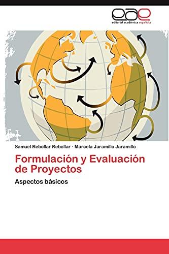 9783848463749: Formulación y Evaluación de Proyectos: Aspectos básicos (Spanish Edition)