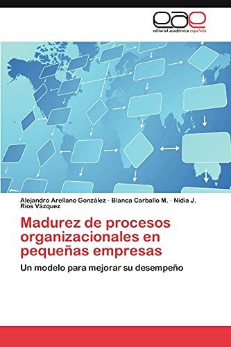 9783848465491: Madurez de Procesos Organizacionales En Pequenas Empresas