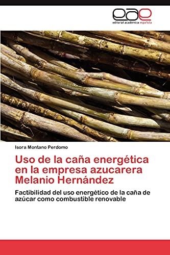 9783848473076: USO de La Cana Energetica En La Empresa Azucarera Melanio Hernandez