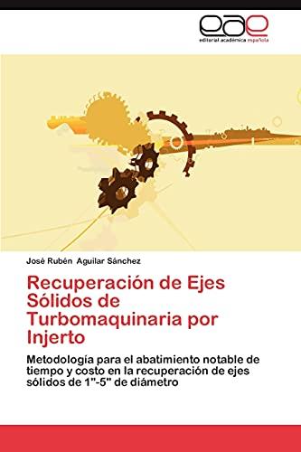 9783848478040: Recuperacion de Ejes Solidos de Turbomaquinaria Por Injerto