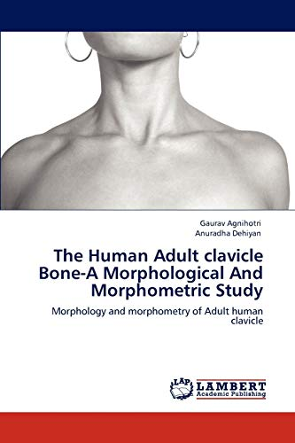 9783848498109: The Human Adult clavicle Bone-A Morphological And Morphometric Study: Morphology and morphometry of Adult human clavicle