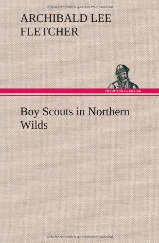 9783849196509: Boy Scouts in Northern Wilds