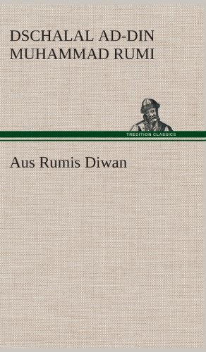 9783849536251: Aus Rumis Diwan