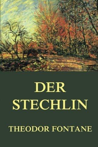 9783849698072: Der Stechlin (German Edition)