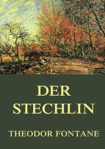 9783849699635: Der Stechlin