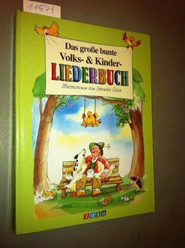 9783850014823: Das große bunte Volks- & Kinderliederbuch (Grossformat)