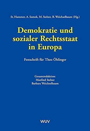Demokratie und sozialer Rechtsstaat in Europa: Stefan Hammer