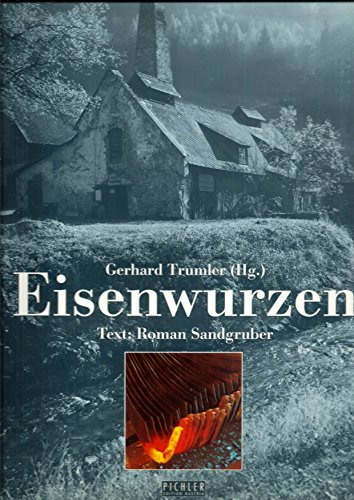 9783854311485: Eisenwurzen: Landschaft, Kultur, Industrie (German Edition)